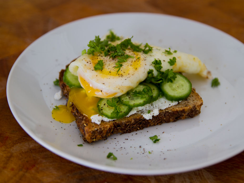 ricotta-and-egg-on-low-carb-sprouted-bread