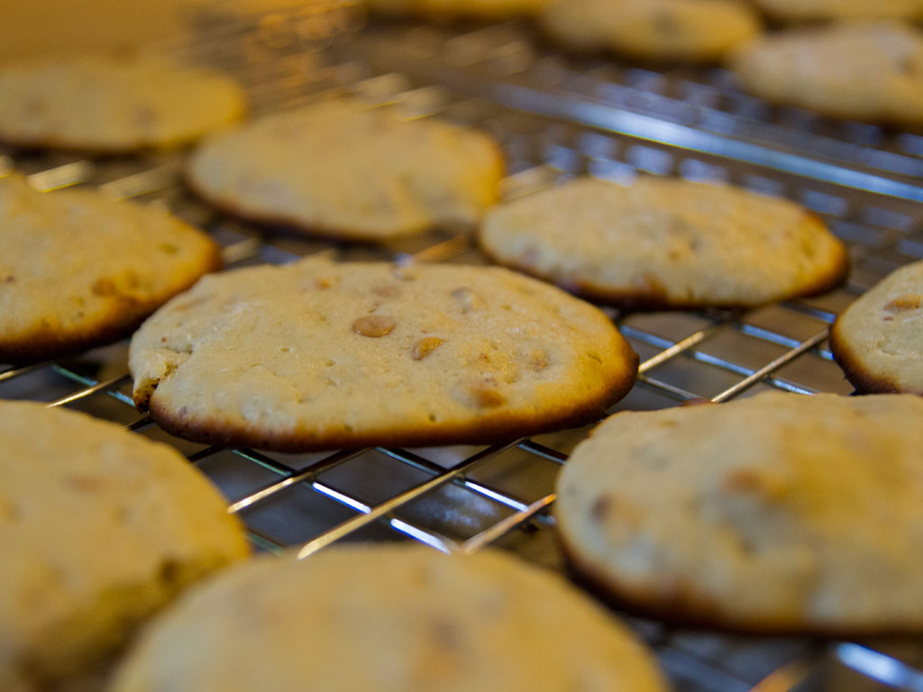low-carb-powerhouse-peanut-butter-and-walnut-biscuits-02
