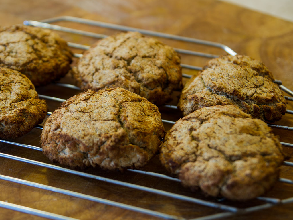yummy-coconut-flour-biscuits-01