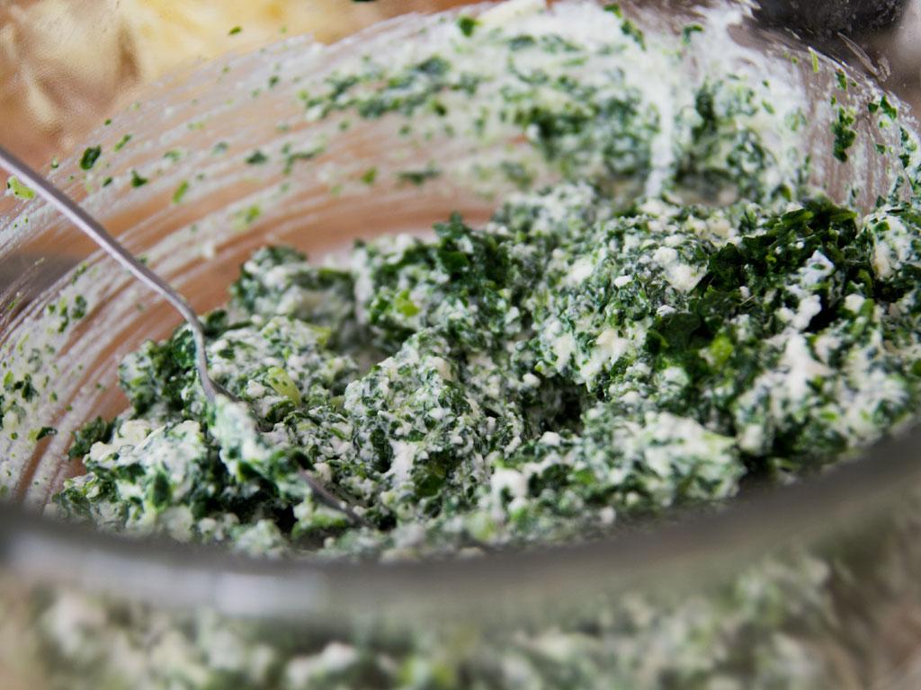 creamy-spinach-enchiladas-02