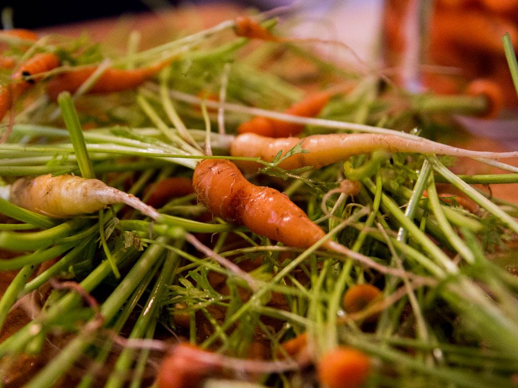 coconut-carrot-thai-soup-02